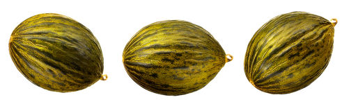 Melon isolated on white Royalty Free Stock Image