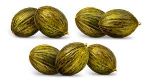 Melon isolated on white Stock Image