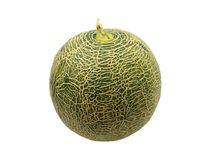 Melon from Japan isolated on white Stock Image