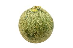 Melon from Japan isolated on white. Background Stock Images