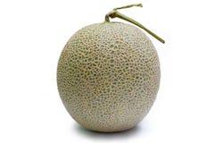Melon japonais d'isolement sur le blanc Photographie stock