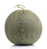 Melon japonais sur le fond blanc Photo libre de droits