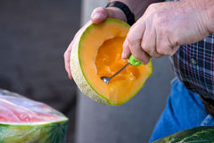 melon kantalupa Zdjęcia Royalty Free