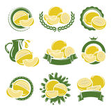 Melon labels and elements set. Vector Stock Photo