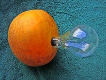 Melon lantern. Stock Image