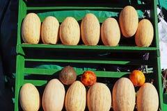Melon mûr juteux sur le marché photo stock