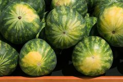 Melon Madness. Melons stacked and displayed appetizingly for shoppers; good for background Stock Images