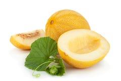 Melon na białym tle zdjęcie royalty free