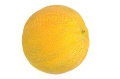 Melon na tle Obraz Royalty Free