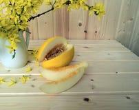 Melon och bukett av forsythia Arkivfoto