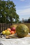 Melon och frukt utomhus Arkivbilder
