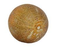 melon odosobniony Fotografia Stock