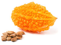 Melon ou momordica amer jaune d'isolement sur le fond blanc Images libres de droits