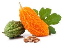 Melon ou momordica amer vert et jaune avec la feuille d'isolement sur le fond blanc Image stock