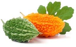 Melon ou momordica amer vert et jaune d'isolement sur le fond blanc Image libre de droits
