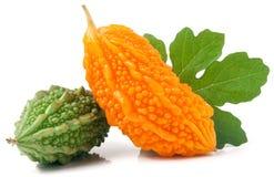 Melon ou momordica amer vert et jaune d'isolement sur le fond blanc Photo stock
