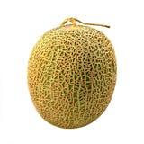 Melon pålagda Japan en vit bakgrund royaltyfri fotografi