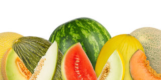 Melon panorama Stock Image