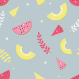 Melon pattern Royalty Free Stock Photography
