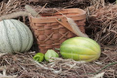 Melon, peppers, squash next to the harvest basket with straw and hay in the background royalty free stock photography