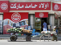 Melon salesman. With traditional donkey cart in front of a modern store named Hamed sons market, Hurghada, Egypt stock photos