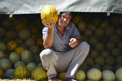 Melon seller Stock Image