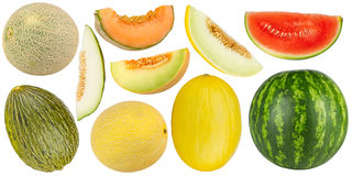 Melon set Royalty Free Stock Image