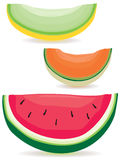 Melon slice variety. A selection of honeydew, cantaloupe and watermelon slices Royalty Free Stock Photos