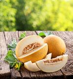 Melon with slices and leaves Stock Photography