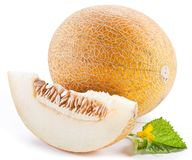 Melon with slices and leaves Stock Image