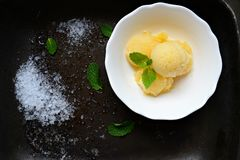 Melon sorbet. Dessert with mint leaf Royalty Free Stock Photos