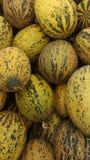 Melon st?llde upp p? livsmedelsbutiken arkivfoton