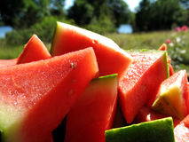 Melon in the sun. Watermelon chopped up in tasty chunks Stock Images