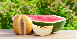 Melon on table in garden Stock Image