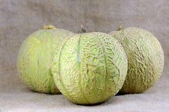 Melon Stock Photos