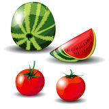 Melon and tomato Stock Photo