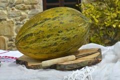 Melon utomhus Arkivbilder