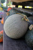 Melon vert Image stock