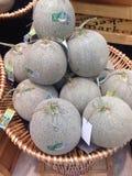 Melon vert Photographie stock