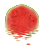 Melon on Water. Fresh melon on water. Isolated Stock Photo