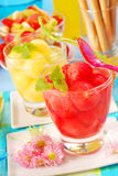 Melon and watermelon juice Royalty Free Stock Photo