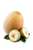 Melon on a white. Stock Photos
