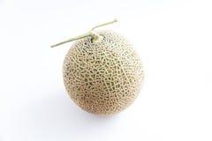 Melon on white background Stock Image