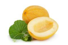 Melon on white background Royalty Free Stock Photos