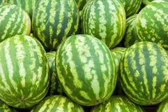 melon woda Zdjęcia Stock