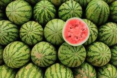 melon woda Zdjęcie Royalty Free