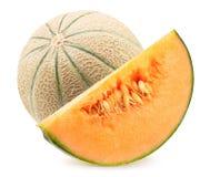 Melon z plasterkiem odizolowywaj?cym na bia?ym tle zdjęcie stock