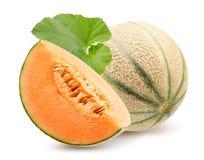 Melon z plasterkiem odizolowywaj?cym na bia?ym tle zdjęcie royalty free