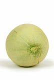 melon zarabiał netto Zdjęcia Royalty Free