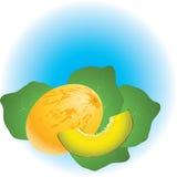 Melone illustrazione vettoriale